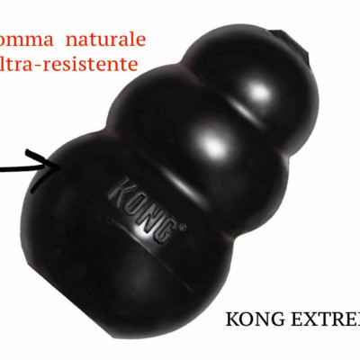 kong-extreme-indistruttibile