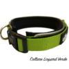 collare-in-nylon-verde