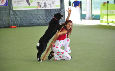 Come far danzare il cane: la Dog Dance