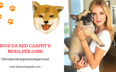 Dive da red carpet e moda per cani