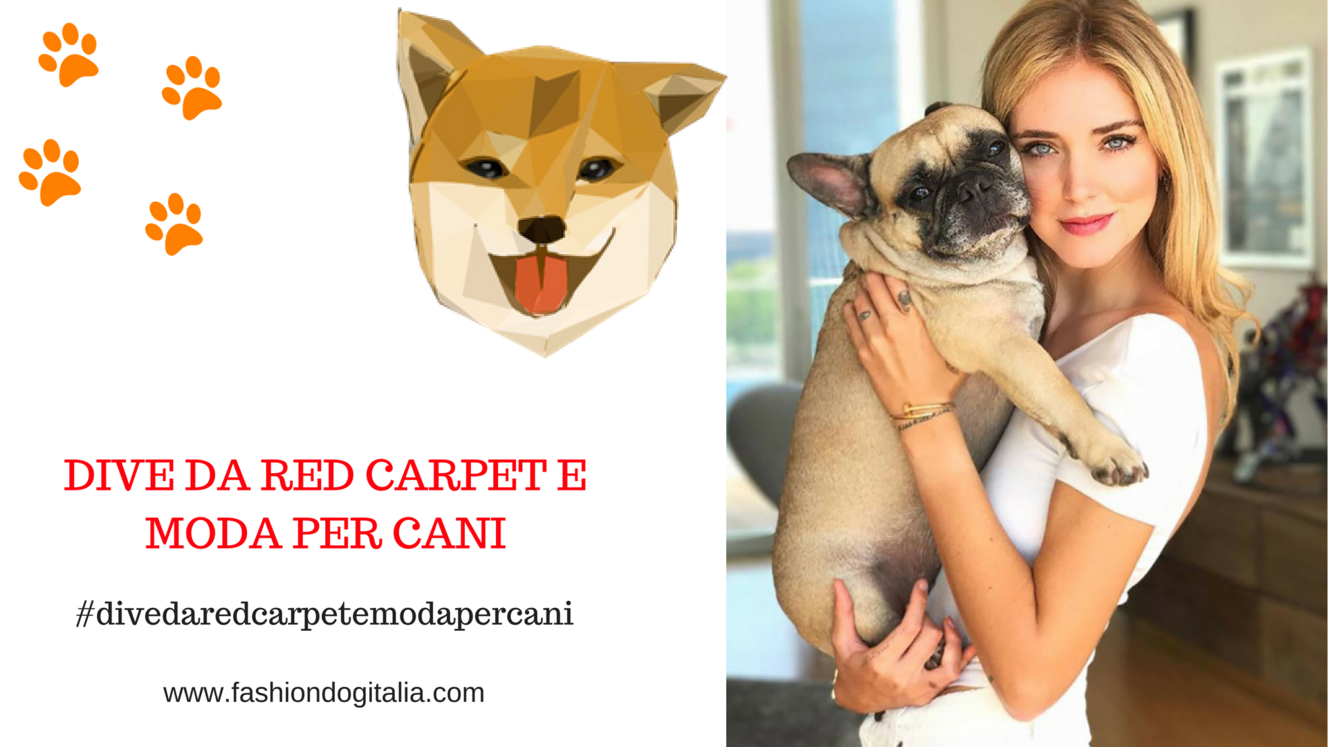 le dive da red carpet e moda per cani
