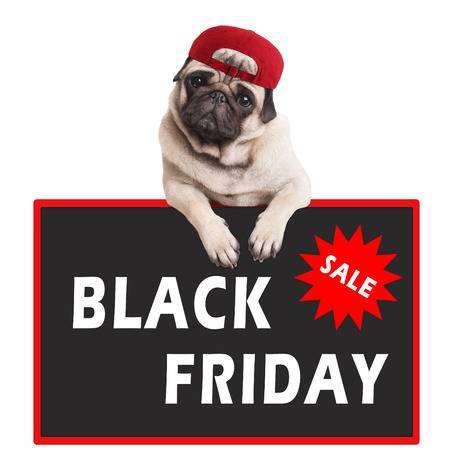 black friday per cani